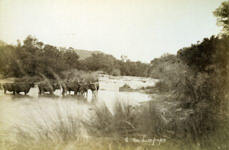 Expédition Coillard au Zambèze